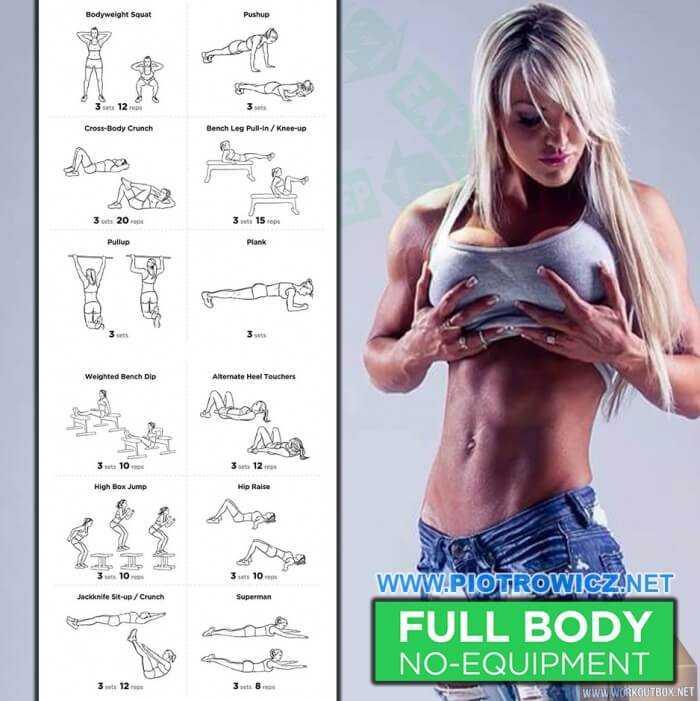 Программа тренировок в тренажерном зале для девушек: сжигаем жир по полной