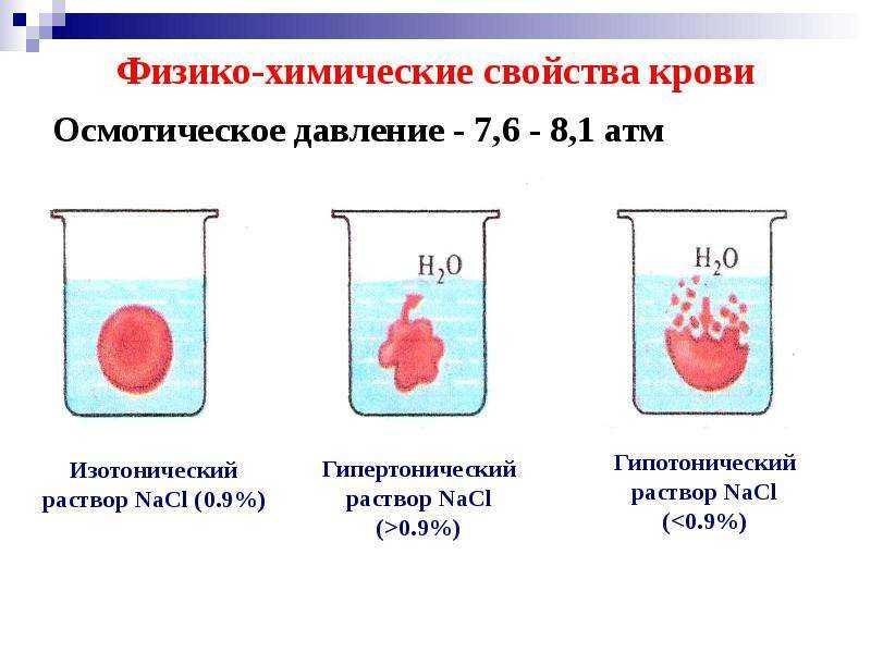 Продукты при заболевании почек: разрешенные и запрещенные