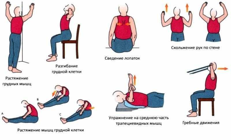 Гимнастика для шеи – десять лучших упражнений