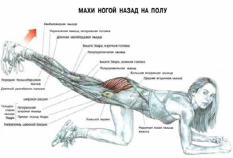 На пути к совершенству: махи ногами и руками, техника выполнения
