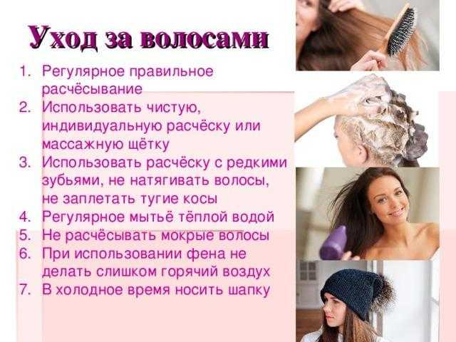 Уход за волосами: домашние маски и 8 советов. без профессиональных средств. маски для волос. что нанести на волосы после мытья в домашних условиях