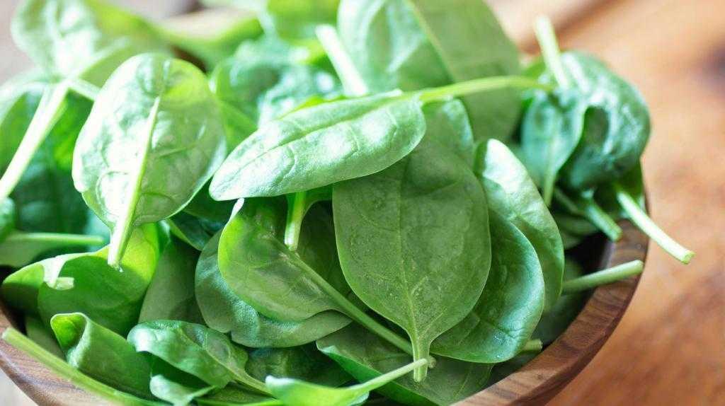 Шпинат – как употреблять в пищу. как правильно употреблять шпинат