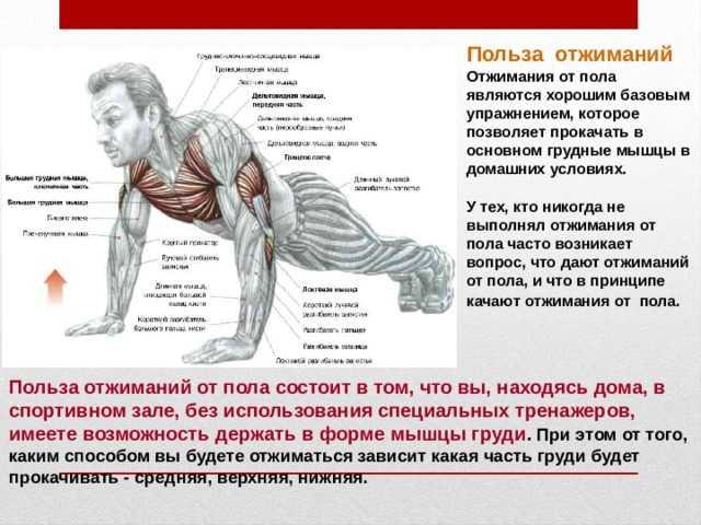 Как научиться делать отжимания без ног, планш, горизонт – рассматриваем два эффективных метода Техника выполнения упражнения и секреты успешной тренировки