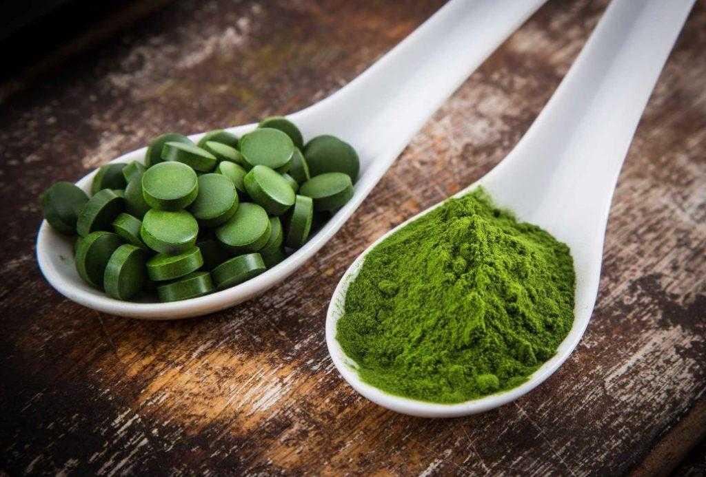 Спирулина для похудения - полезные свойства, применение, вред