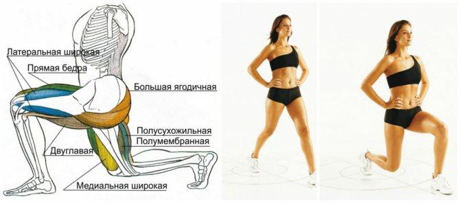 Утяжелители для ног — виды и вес, упражнения для бедер и ягодиц