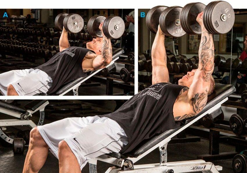 Тренировка мышц груди: как правильно тренирвать грудные мышцы