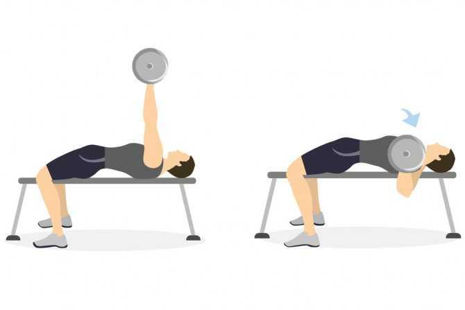 Жим свенда: техника выполнения, какие мышцы работают, ошибки