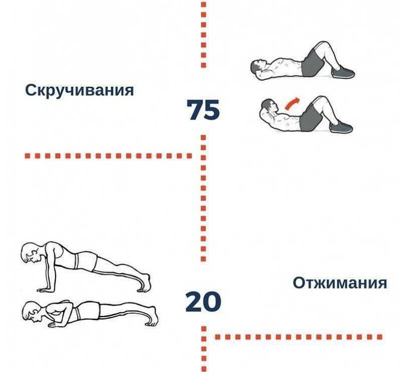 Топ-14 тренировок от кристин салюс на 800-1000 калорий