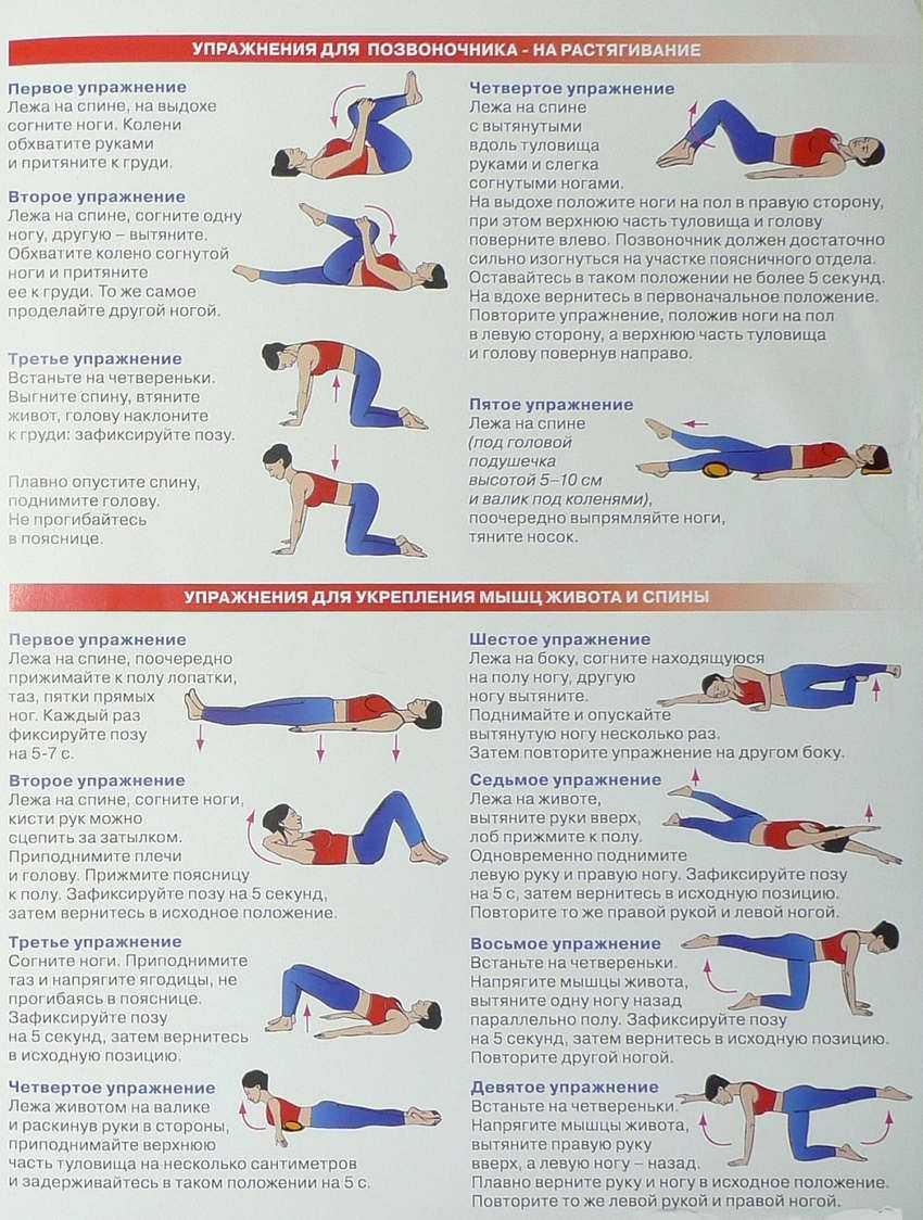 Упражнения для шеи: самые простыне эффективные упражнения для начинающих. советы по нагрузке шейных мышц (70 фото)