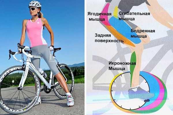 """Поможет ли похудеть упражнение """"велосипед""""?"""