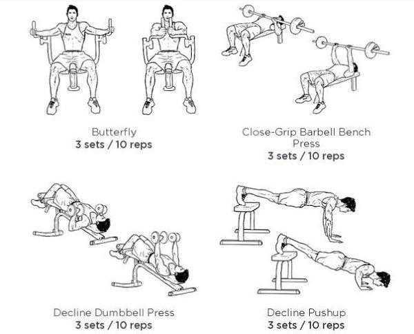 Тренировка грудь-трицепс: качаем эффективно, какие упражнения подобрать и как их правильно сочетать, стоит ли работать с этими мышцами в один день