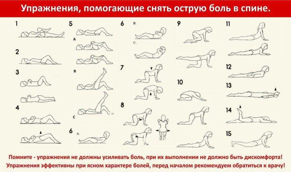 Безопасные упражнения при грыже поясничного отдела позвоночника Основные правила лечебной гимнастики для укрепления мышц спины и растяжки позвоночника