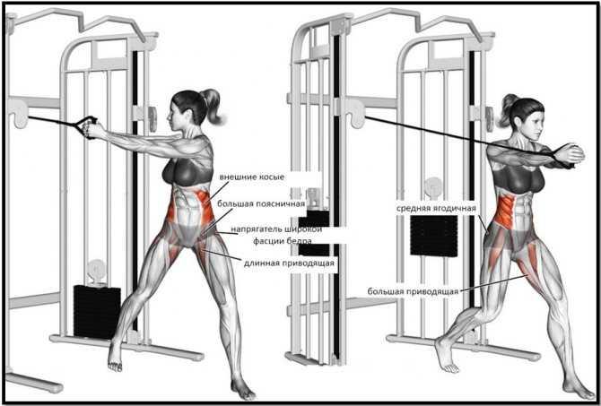 Упражнения с блином от штанги. три упражнения для тренировки рук и плеч в домашних условиях