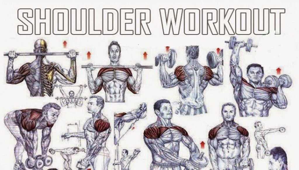 Топ упражнений для проработки плеч, советы по организации тренировки