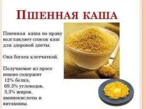 Пшенная каша: польза + 10 простых пп-рецептов пшенки