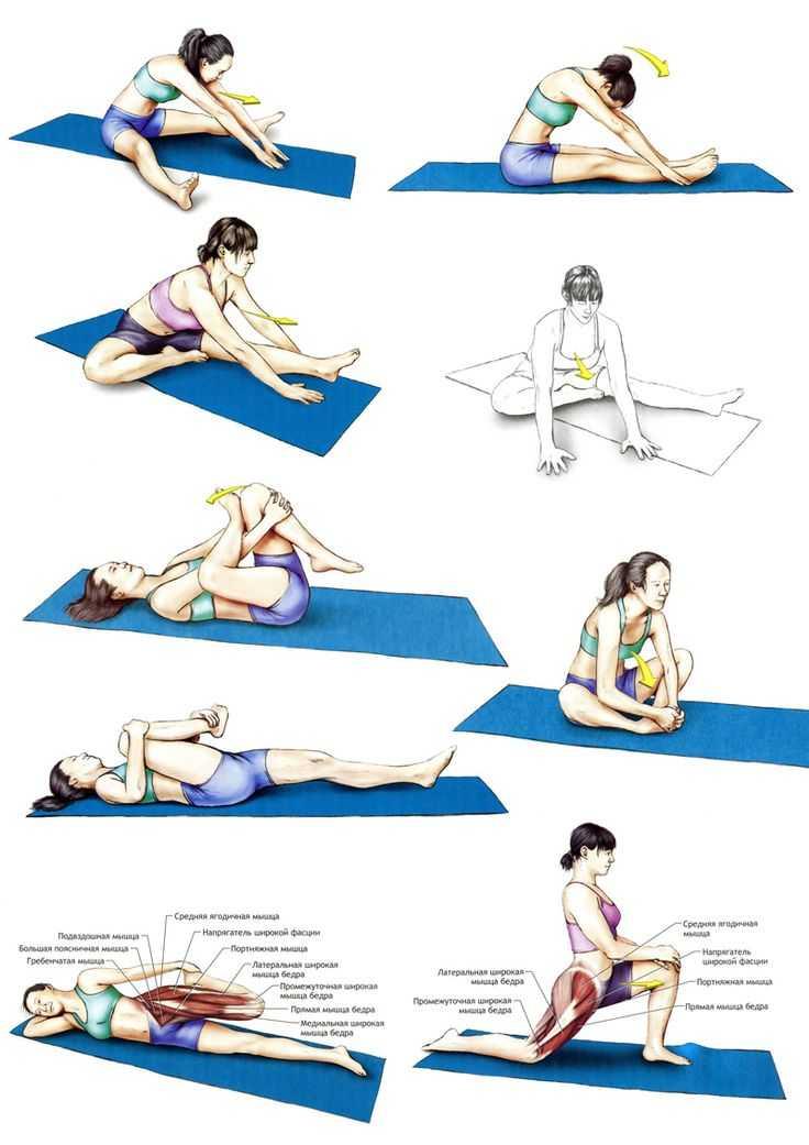 Видео для гибкости и здоровья спины с катериной буйда