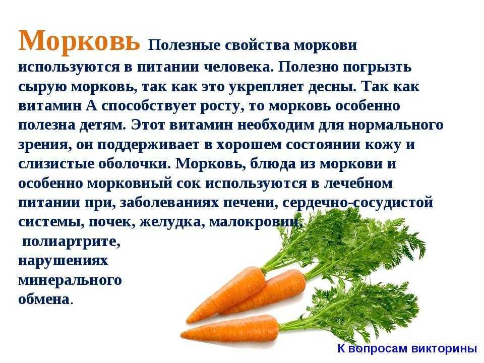 Польза и вред употребления моркови: как её использовать в косметологии и с целью лечения? практические рекомендации
