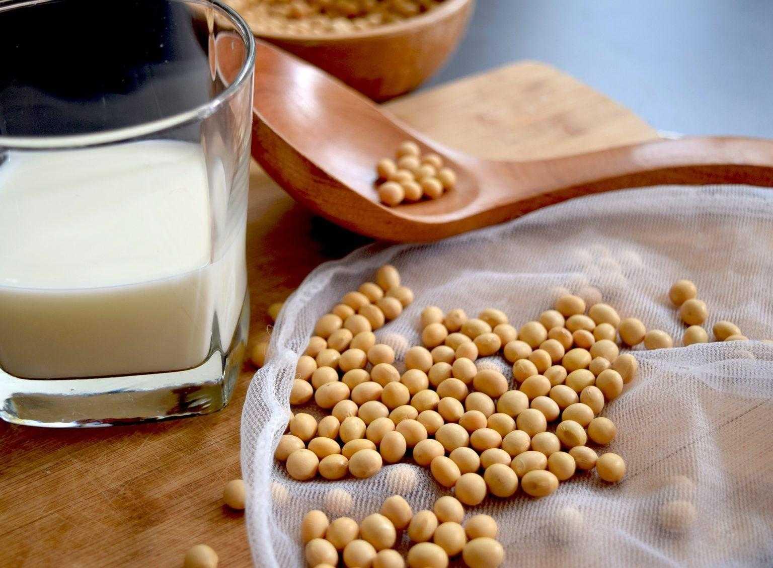 Соевый белок (протеин Формула 3), плюсы соевого сывороточного быстрого протеина для похудения
