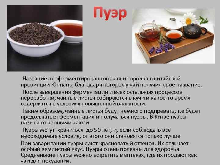 Как заваривать зеленый чай и пуэр. ультимативный гайд