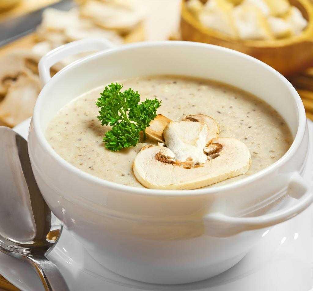 Грибной суп (99 рецептов с фото) - рецепты с фотографиями на поварёнок.ру