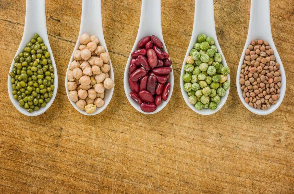 Обзор 10 полезных орехов для похудения и правильном питании: общая характеристика, КБЖУ, польза и вред, куда можно добавить, стоимость, советы по потреблению