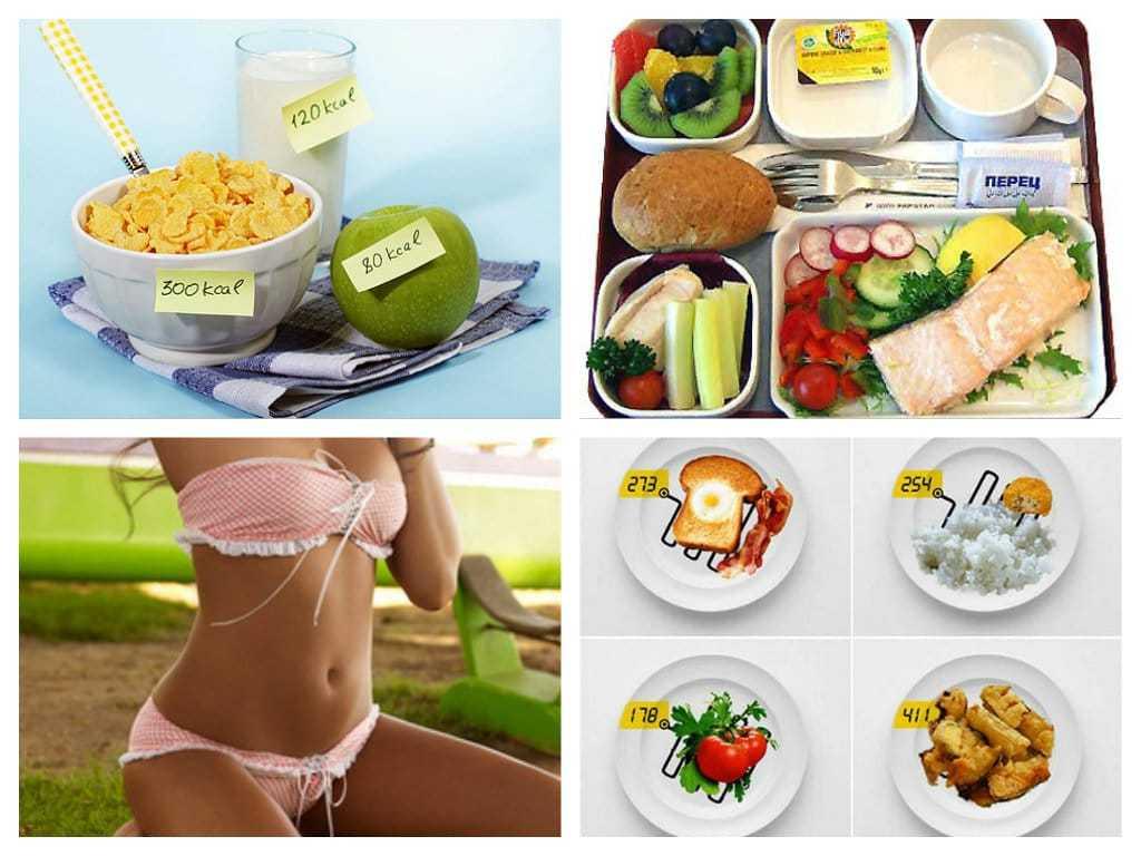 5 основных мифов при похудении методом подсчета калорий