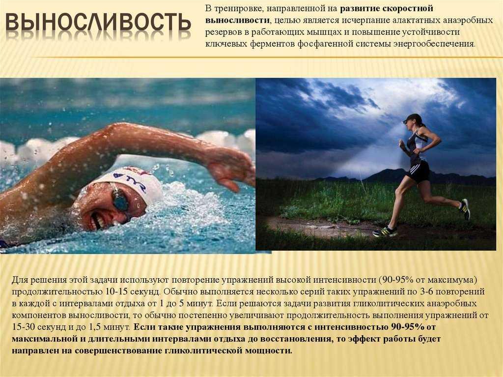 Cайкл (cycle): что это за тренировка в фитнесе, программа занятий аэробикой в домашних условиях