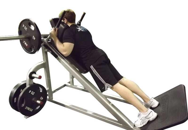 Гакк-приседания в тренажере и со штангой: техника выполнения