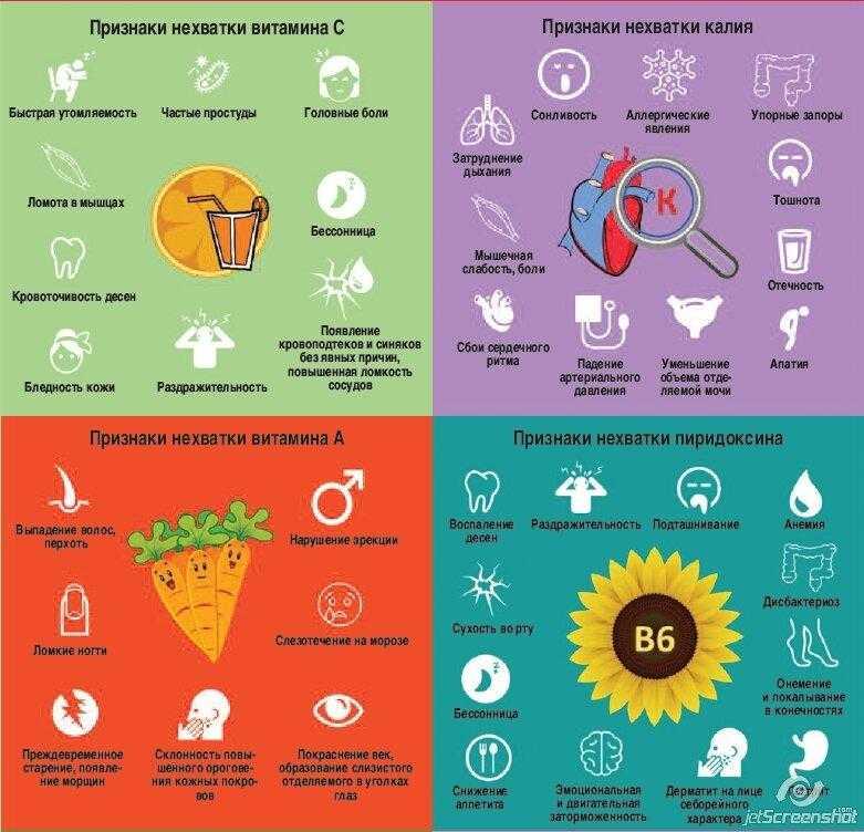 Зимой нужны витамины: где же нам их достать?
