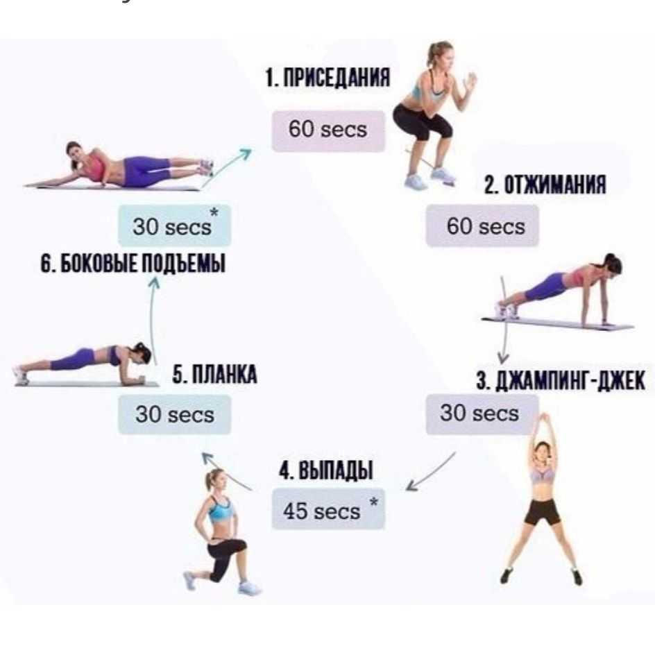Круговая тренировка в тренажерном зале и в домашних условиях: 5 комплексов упражнений без тренажеров, со штангой и гантелями