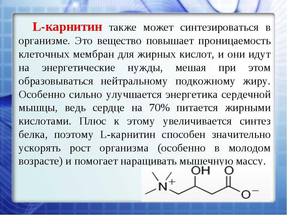 Правила приема л-карнитина в капсулах
