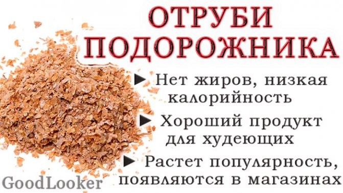 Пшеничные отруби: польза и вред, как принимать