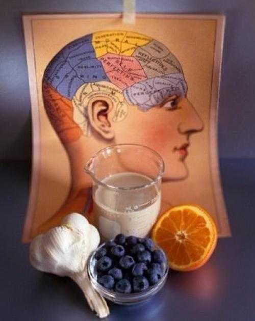 Какие продукты повышают работоспособность и выносливость организма человека — топ 6 лучших