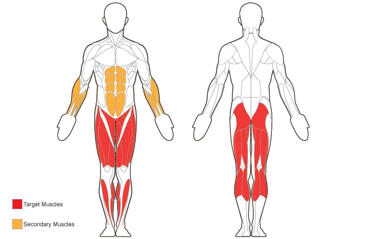 Какие мышцы работают и качаются при беге, как они задействованы - ответы от fitnessera.ru