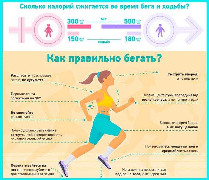Сколько калорий сгорает при разных видах ходьбы?