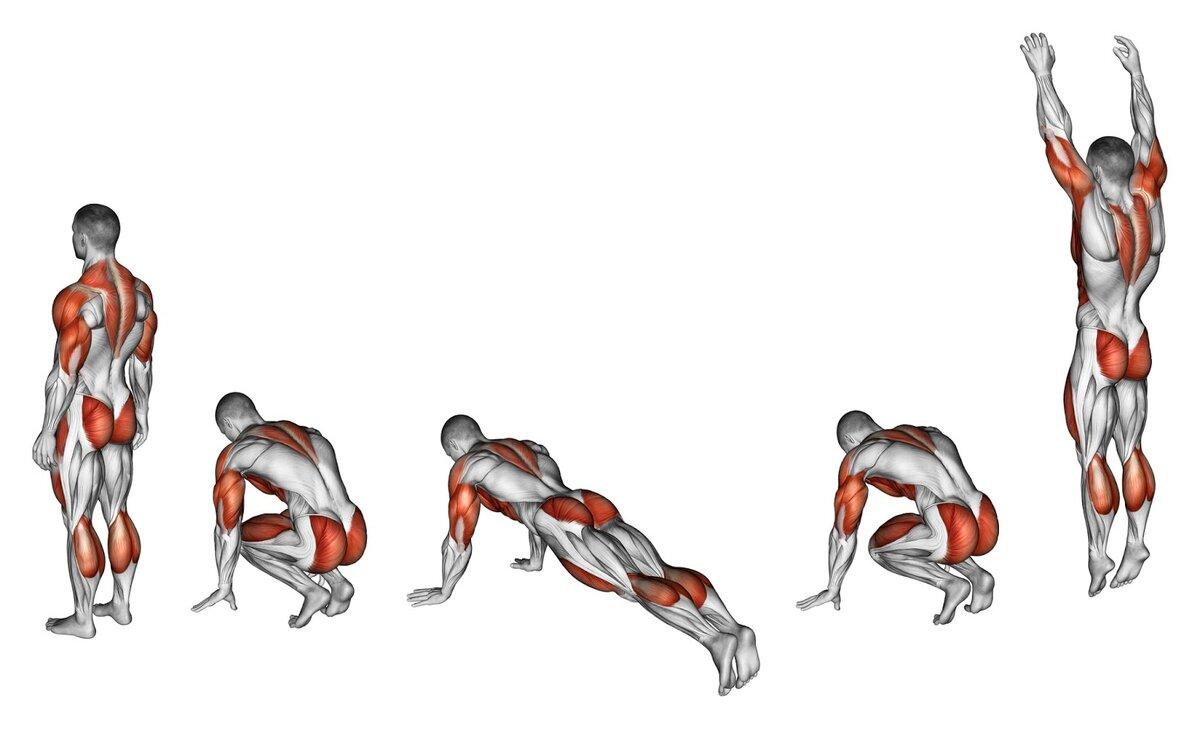 Комплекс упражнений на трицепс с гантелями для домашних условий   rulebody.ru — правила тела