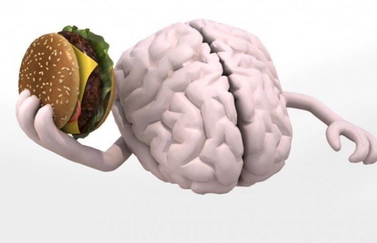 Продукты для улучшения работы головного мозга и памяти: какие продукты питания полезны