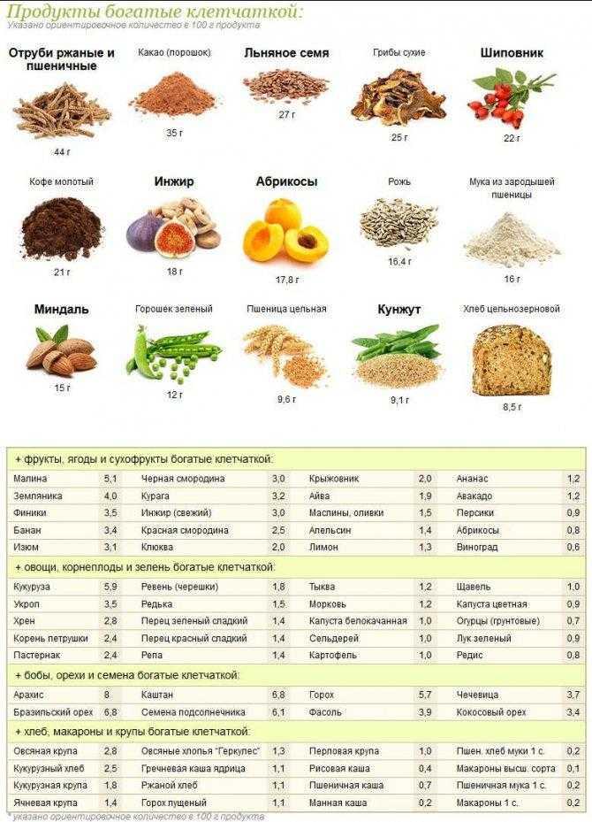 Пищевые волокна: понятие, значение, виды