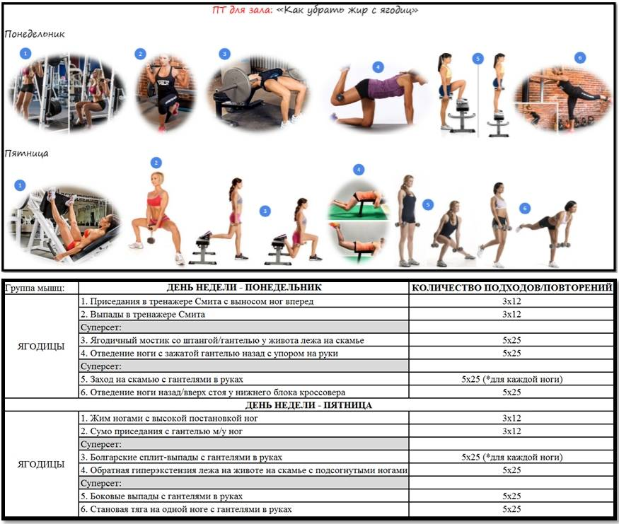 Сколько должна длиться тренировка в тренажерном зале: правила эффективных тренировок, техника выполнения упражнений
