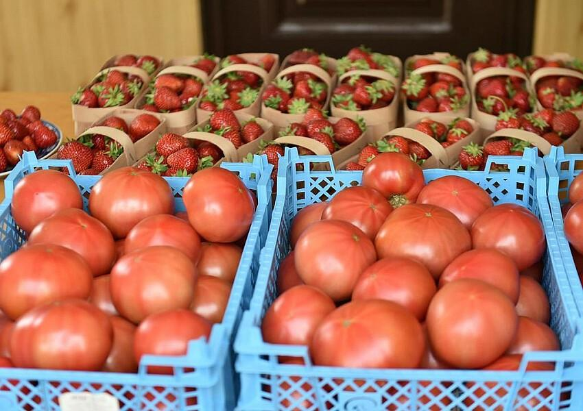Как открыть пищевое производство: 20 самых бюджетных идей