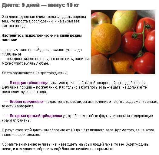 Мандариновая диета для похудения: эффективные меню, отзывы - минус 14 кг легко - похудейкина
