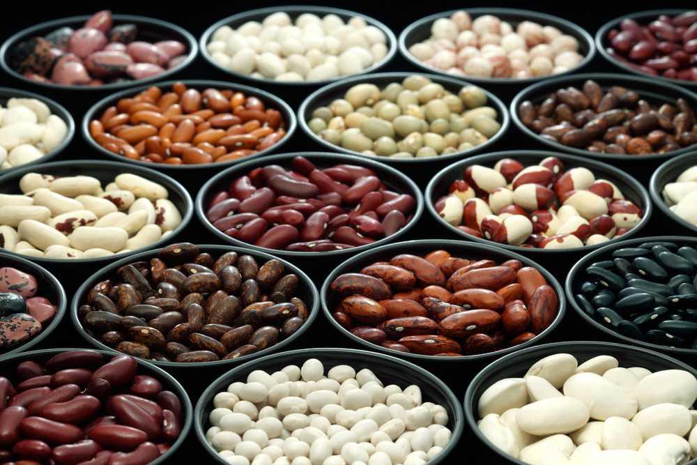Грецкие орехи при похудении - сколько можно есть, польза