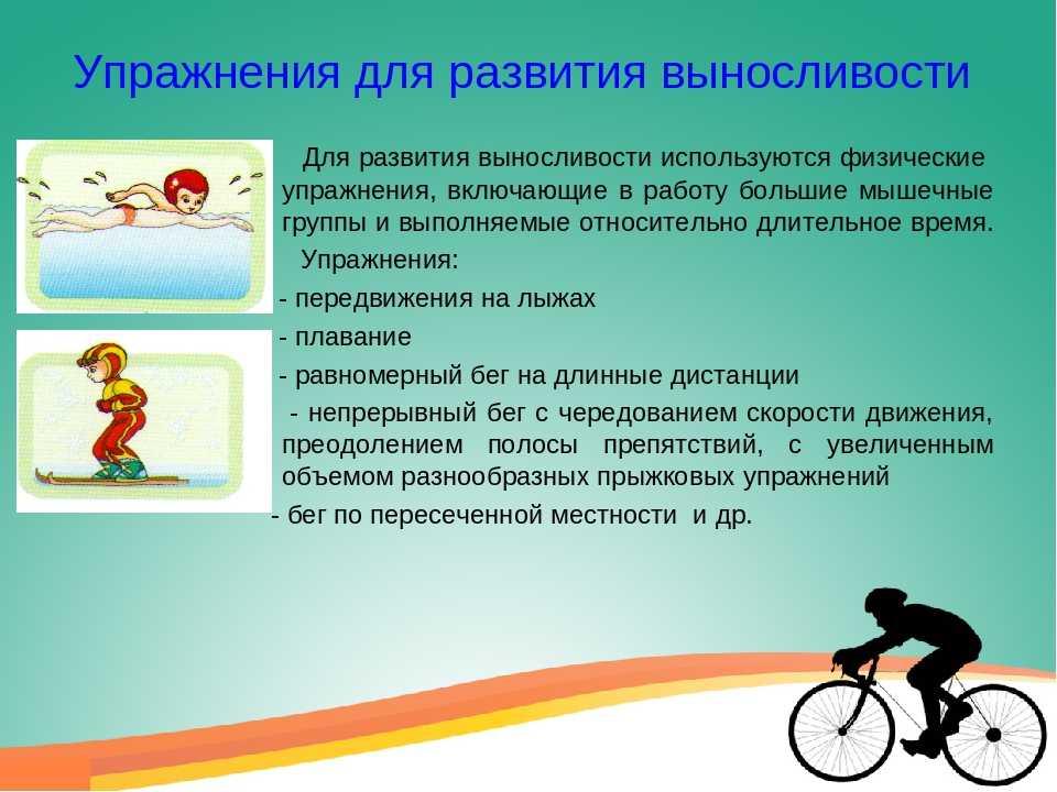Базовая тренировка велосипедиста | веложурнал