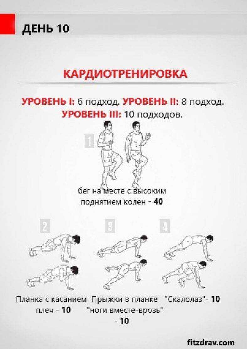 Кардио тренировка дома - программа | fitfree
