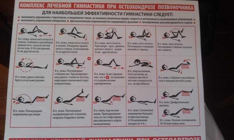 Упражнения для грудного отдела позвоночника в домашних условиях: лечебная физкультура при остеохондрозе
