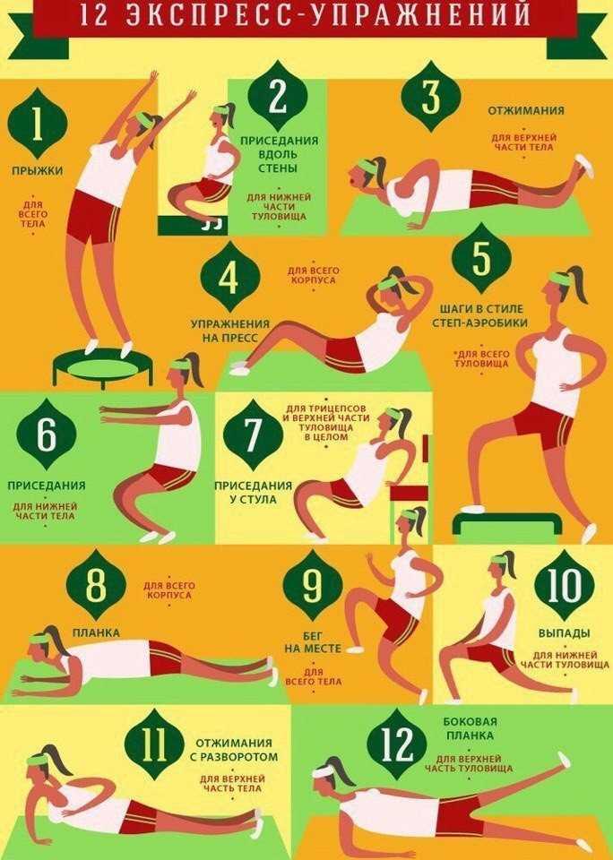Фитнес-программа для похудения в домашних условиях и в тренажерном зале