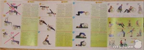 Эффективные упражнения на фитболе для похудения в домашних условиях