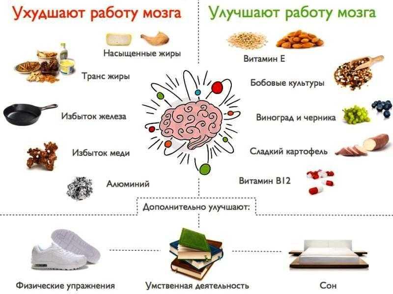 Продукты для работы головного мозга и улучшения памяти