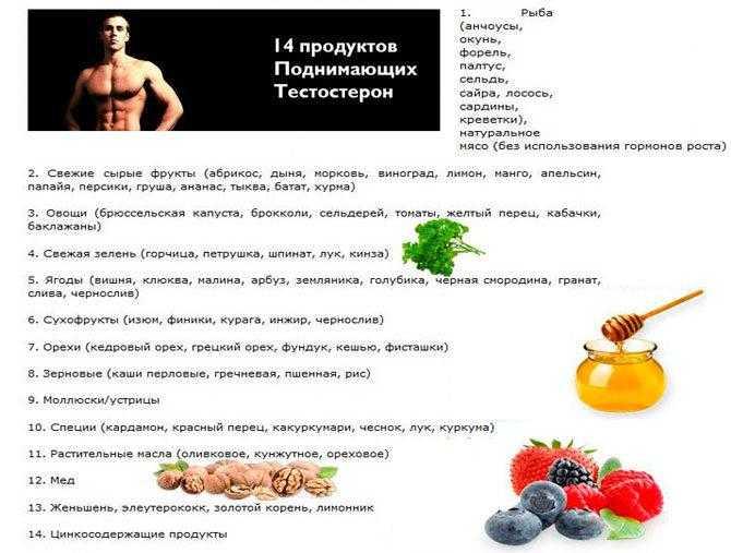 Полезные продукты для мужчин для сексуальной полноценности