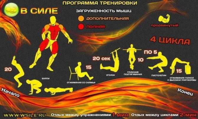 Подтягивания на силу — sportfito — сайт о спорте и здоровом образе жизни